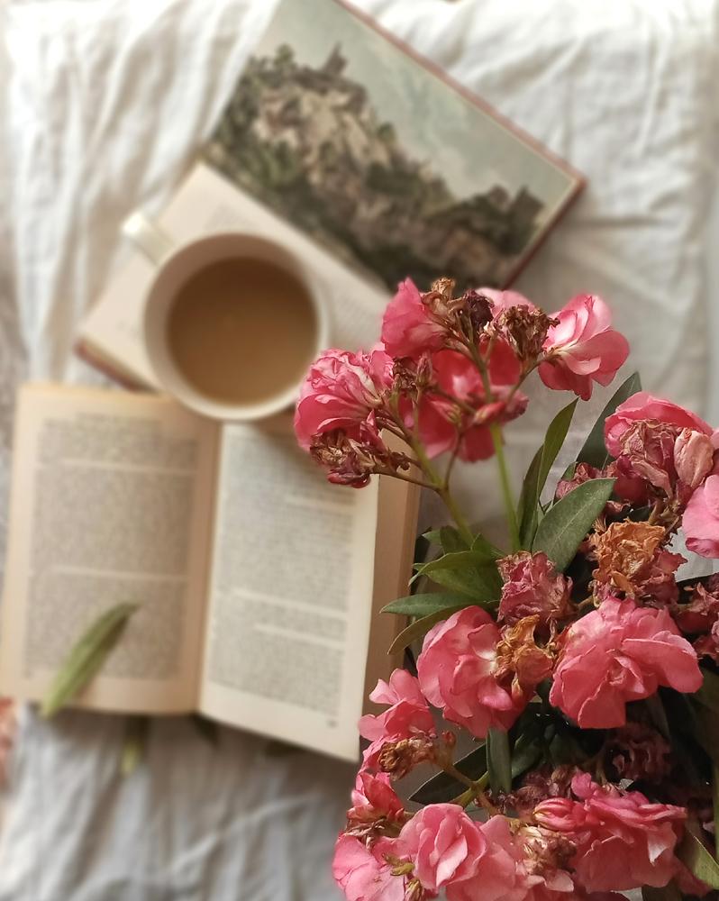 Slow Living Blogs Trend