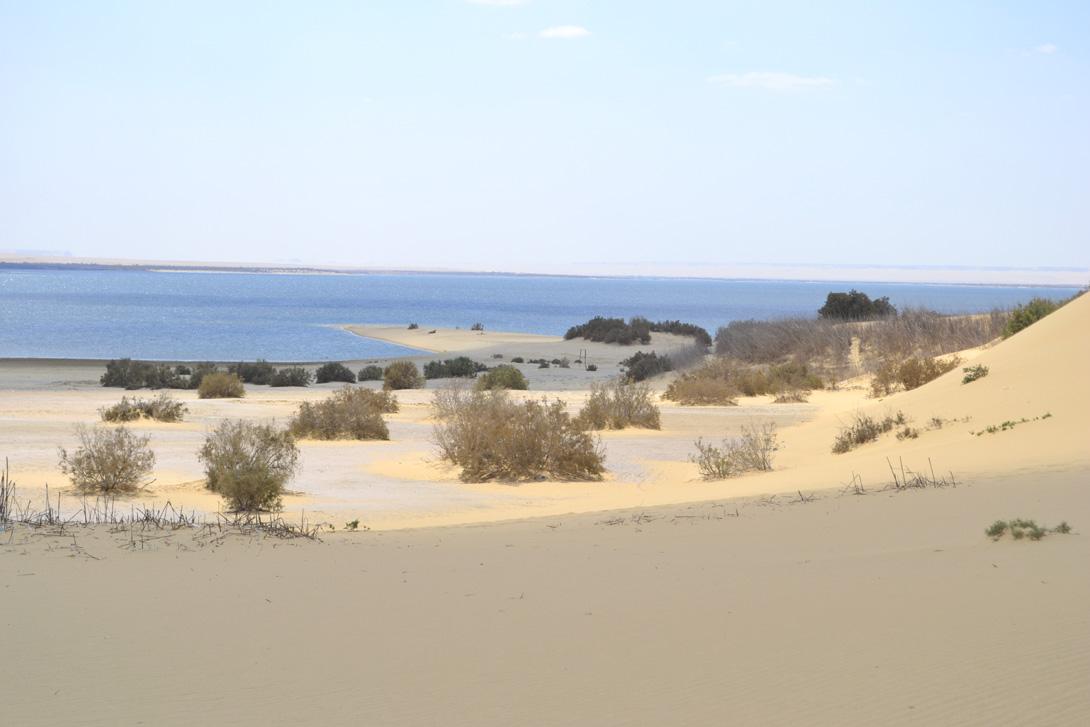 Wadi El Rayan, Fayoum, Egypt
