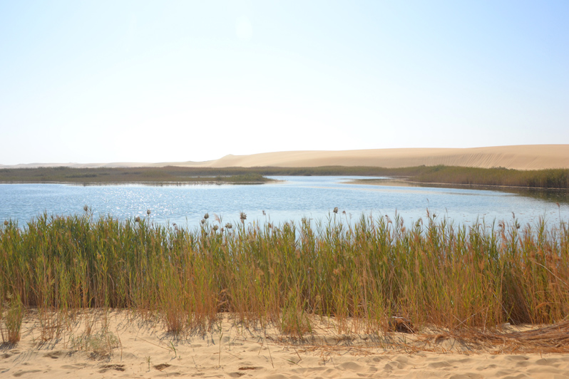 siwa lake