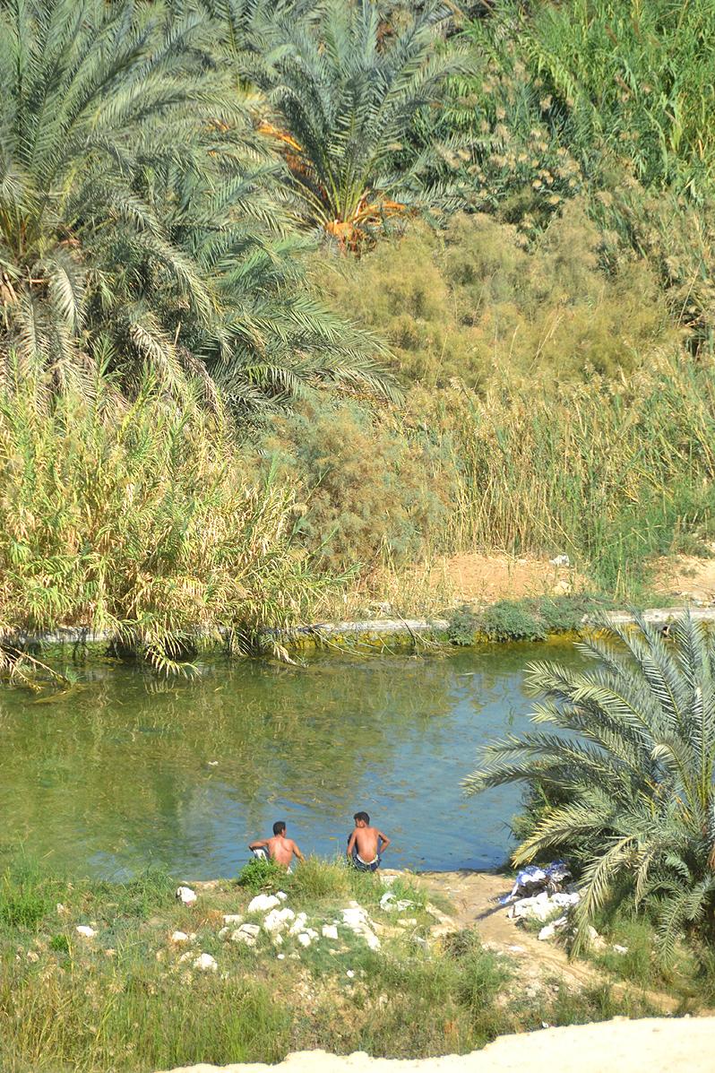 siwa egypt