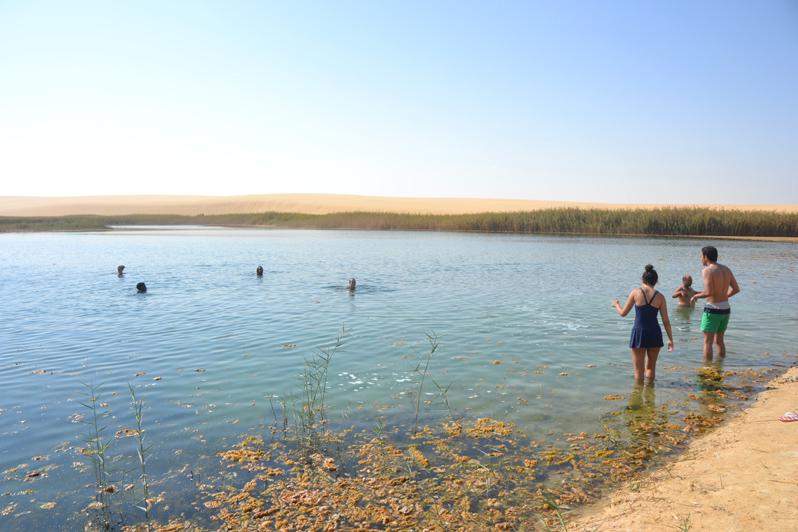 siwa lake egypt