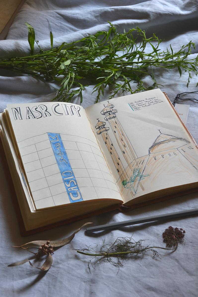 nasr city diary