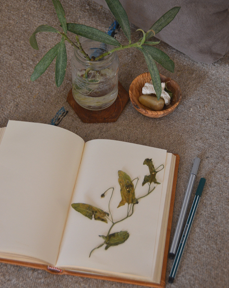 journal benefits